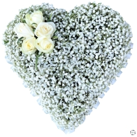 Gypsophila Heart.