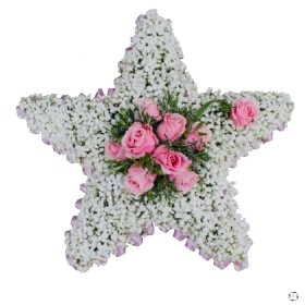 Gypsophila Star Funeral Tribute